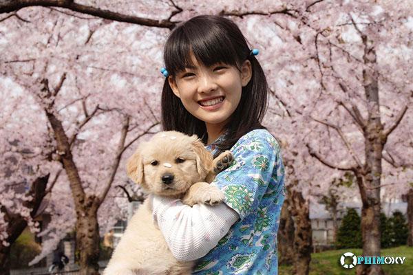 10 lời hứa với chú chó của tôi (10 Promises to My Dog) 2008 - 1