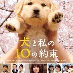 10 lời hứa với chú chó của tôi (10 Promises to My Dog) 2008